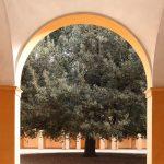 San-Paolo-Modena-Gallery-01